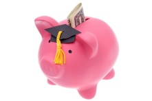Piggy bank with a graduation cap isolated on white background